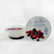 Forest Fruit Yoghur t- 12 x 125gr